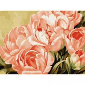 Розовые цветы Раскраска картина по номерам на холсте
