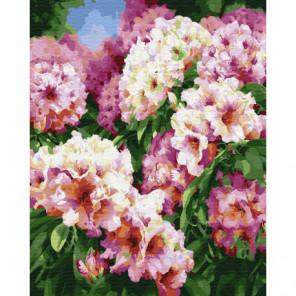 Цветочные кусты Раскраска картина по номерам на холсте