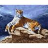 Тигр на камнях Раскраска картина по номерам на холсте