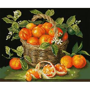 Сочные апельсины Алмазная мозаика вышивка Паутинка М-271