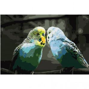 Волнистые попугайчики 100х150 Раскраска картина по номерам на холсте