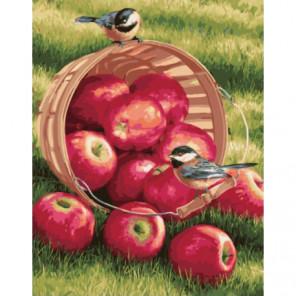 Яблоки и птицы Раскраска картина по номерам на холсте