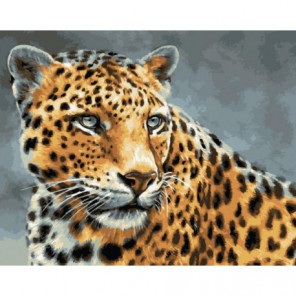 Леопард Раскраска картина по номерам на холсте