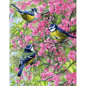 Весенние синицы Раскраска картина по номерам на холсте