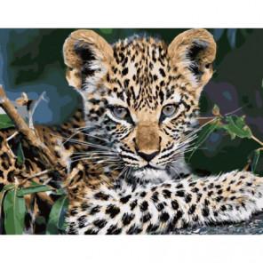 Подрастающий леопард Раскраска картина по номерам на холсте
