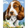 Одинокий щенок Раскраска картина по номерам на холсте