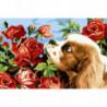 Пес и аромат роз Раскраска картина по номерам на холсте