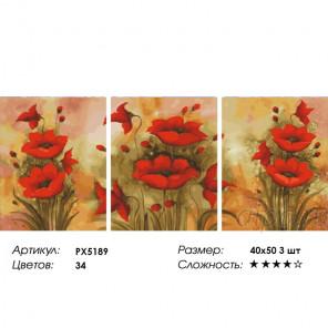 Сложность и количество цветов Краски маков Триптих Раскраска картина по номерам на холсте PX5189