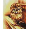 Музыкальная сова Алмазная мозаика на подрамнике