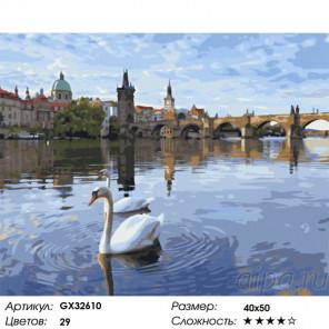 Сложность и количество цветов Городские лебеди Раскраска картина по номерам на холсте GX32610