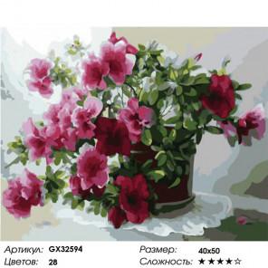 Сложность и количество цветов Цветущая азалия Раскраска картина по номерам на холсте GX32594