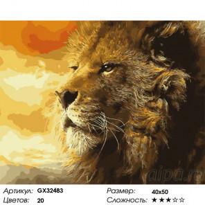Сложность и количество цветов Царский взгляд Раскраска картина по номерам на холсте GX32483