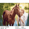 Любимая лошадь Раскраска картина по номерам на холсте