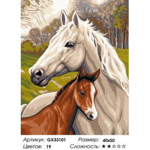 Сложность и количество цветов Лошадь и жеребенок Раскраска картина по номерам на холсте GX33101