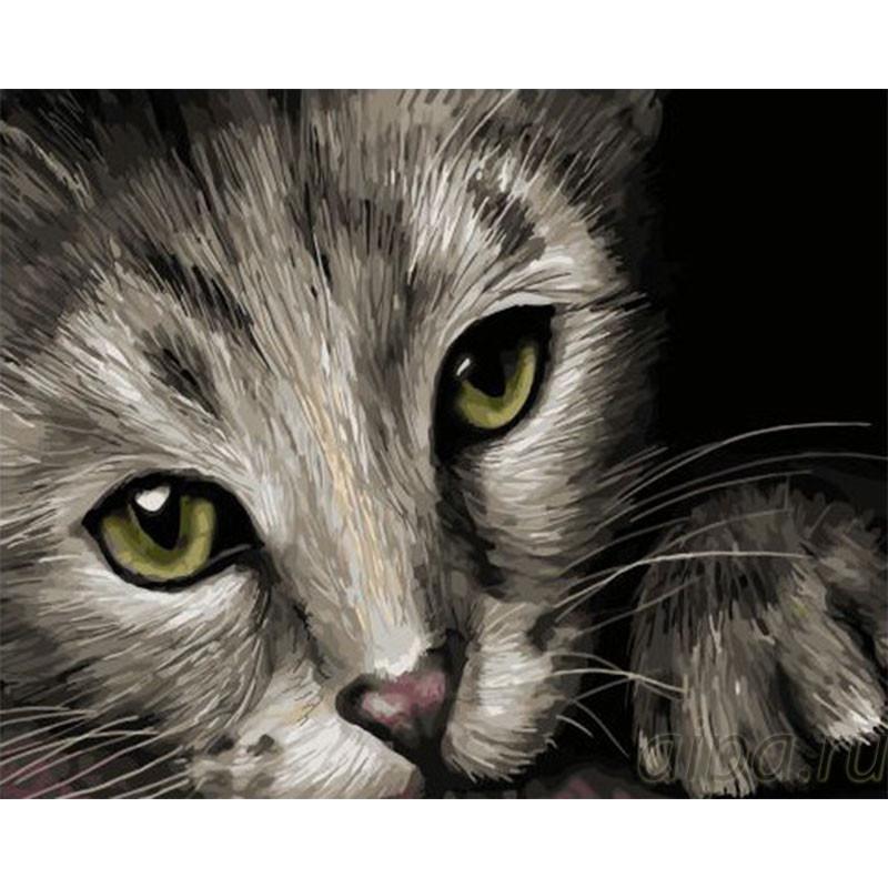 GX32909 Кошка Раскраска картина по номерам на холсте ...
