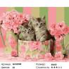 Коробка с котятами Раскраска картина по номерам на холсте