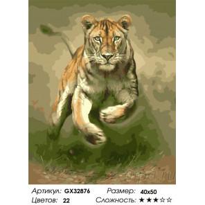 Сложность и количество цветов Тигриная прыть Раскраска картина по номерам на холсте GX32876