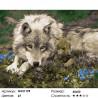 Волчица Раскраска картина по номерам на холсте