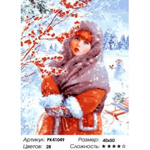 Сложность и количество красок Девица-красавица Раскраска картина по номерам на холсте PK41049