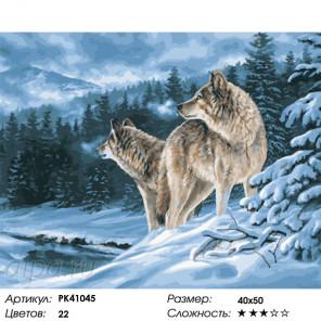Сложность и количество красок Лесные волки Раскраска картина по номерам на холсте PK41045