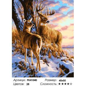Сложность и количество красок Пара оленей Раскраска картина по номерам на холсте PK41040