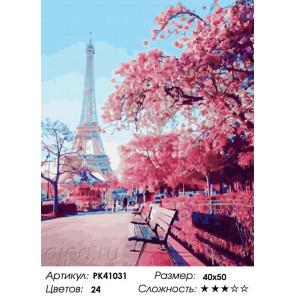 Весенняя красота Парижа Раскраска картина по номерам на холсте PK41031
