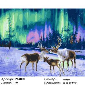 Сложность и количество красок Северное сияние Раскраска картина по номерам на холсте PK41020