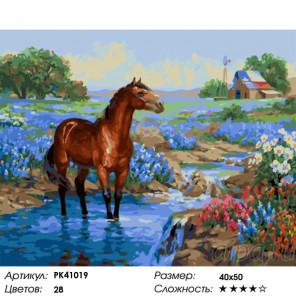 Сложность и количество красок Отдых лошади Раскраска картина по номерам на холсте PK41019