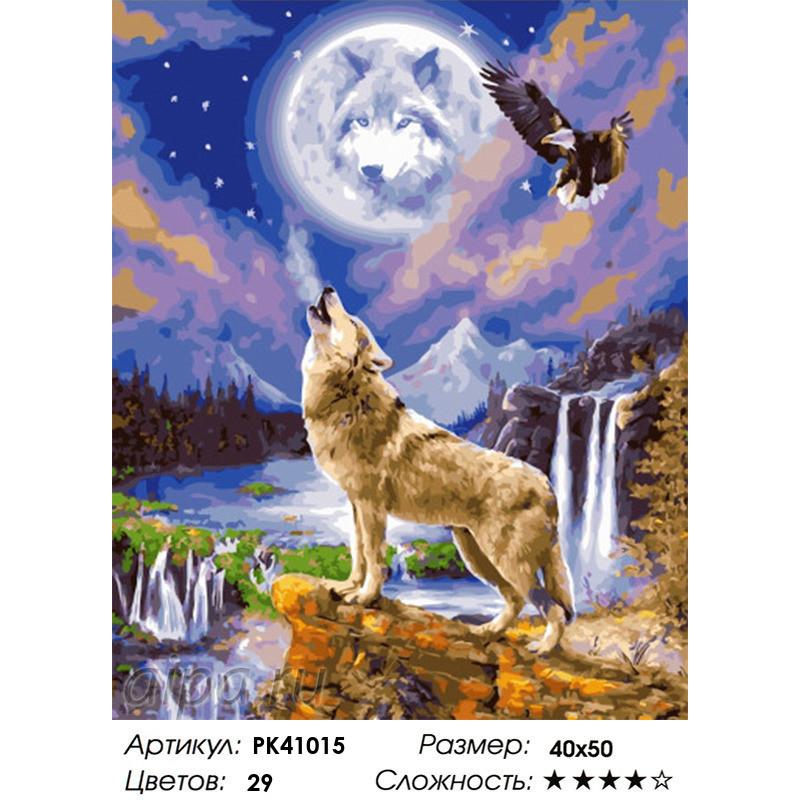 PK41015 Волк и орел Раскраска картина по номерам на холсте ...