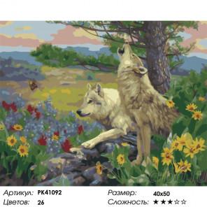 Сложность и количество цветов Степные волки Раскраска картина по номерам на холсте PK41092