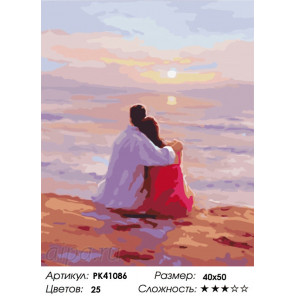 Сложность и количество цветов Мечты о будущем Раскраска картина по номерам на холсте PK41086