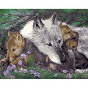 Заботливая волчица Раскраска картина по номерам на холсте PK41081