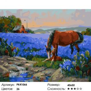Сложность и количество цветов Забота о жеребенке Раскраска картина по номерам на холсте PK41066