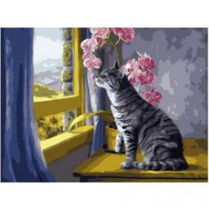 Кошка и орхидея Раскраска картина по номерам на холсте