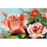 Кустовая роза Раскраска картина по номерам на холсте