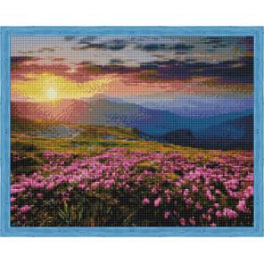 Цветущее поле на закате Алмазная мозаика на подрамнике QA204010