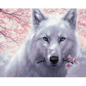 Белый волк Раскраска картина по номерам на холсте Z-GX29952