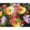 Герберы и розы Раскраска картина по номерам на холсте