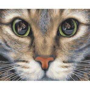 Кошачьи глаза Раскраска картина по номерам на холсте Z-GX31984