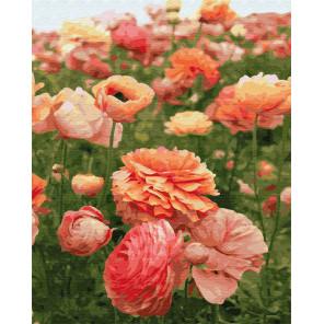 Нежный цветок Раскраска картина по номерам на холсте Z-GX30927