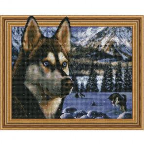 В заснеженных горах Картина 3D мозаика с нанесенной рамкой на подрамнике Molly KM0194
