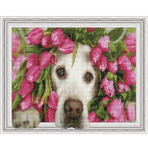 Лабрадор в тюльпанах Картина 3D мозаика с нанесенной рамкой на подрамнике Molly KM0195