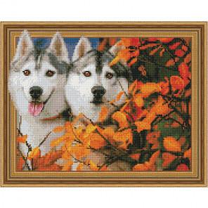 Всегда вместе Картина 3D мозаика с нанесенной рамкой на подрамнике Molly KM0196