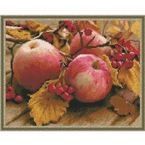 Спелые яблоки Картина мозаикой с нанесенной рамкой на подрамнике Molly KM0203