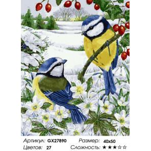 Сложность и количество цветов Зимние синички Раскраска картина по номерам на холсте GX27890