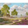 Цветущие деревенские луга Раскраска картина по номерам на холсте