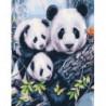 Милое семейство панд Раскраска картина по номерам на холсте