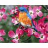 Весенняя птичка Раскраска картина по номерам на холсте
