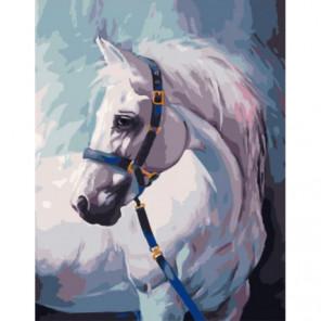 Белая лошадь с уздечкой Раскраска картина по номерам на холсте