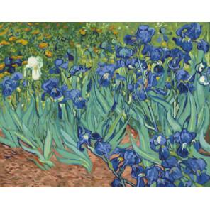 Количество цветов и сложность Ирисы (Ван Гог) Раскраска картина по номерам на холсте ZX 20888